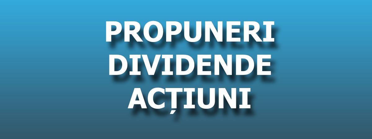 Propuneri dividende
